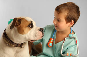 Advanced pet care in dermatology and imaging