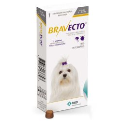 Is Bravecto Killing Dogs?